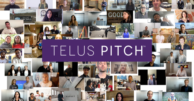 A collage of various entrepreneurs recording their small business pitch to TELUS.
